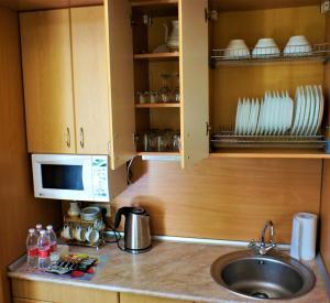 Кухня или мини-кухня в Отель ПОЛИНА