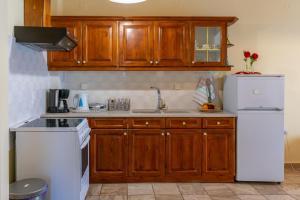 Η κουζίνα ή μικρή κουζίνα στο Naftis Apartments