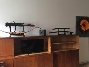 Телевизор и/или развлекательный центр в Large room near the city center