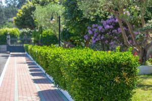 Jardín al aire libre en Hotel Turimar