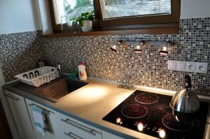 Cuisine ou kitchenette dans l'établissement Bratislava Castle Hill Apartment