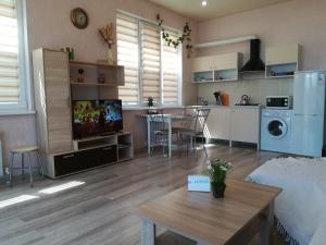Кухня или мини-кухня в Guest House Daria