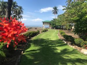 A garden outside Brisa del Mar