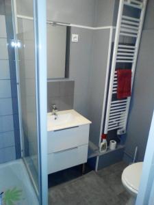 Salle de bains dans l'établissement Appartement Résidence les Acacias