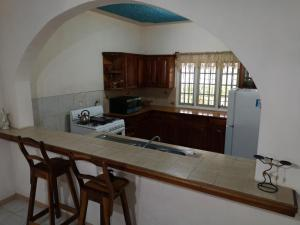 A kitchen or kitchenette at Green's Palace Jamaica