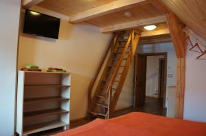TV a/nebo společenská místnost v ubytování Roubenka Deštné