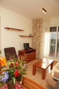 Una televisión o centro de entretenimiento en Apartamentos Turisticos Aguilas de los Collados