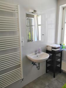 A bathroom at Apartment Olomouc Horni Namesti