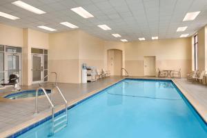 The swimming pool at or near Embassy Suites Boston at Logan Airport