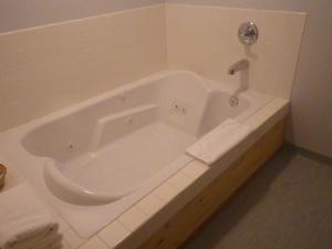 A bathroom at Alcan Motor Inn