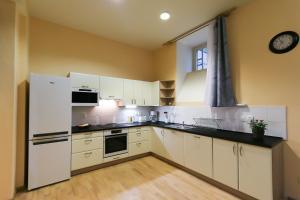 Kuchyň nebo kuchyňský kout v ubytování Vinohrady Belgicka Apartments