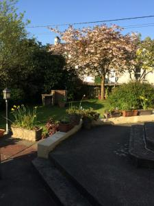 A garden outside Millbrae Town Cottage