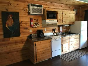 A kitchen or kitchenette at Walnut Canyon Cabins