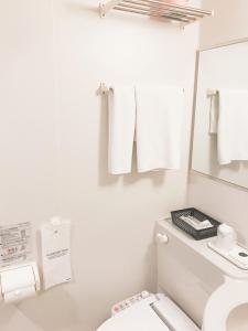 A bathroom at Yamazaki Seipan Pension Fund Hall