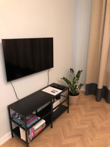 Televizors / izklaižu centrs naktsmītnē ROOM 10