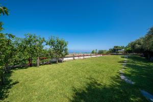 Giardino di Appartamenti Ischia la Sentinella