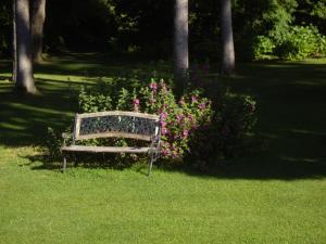 A garden outside La Grange des Marettes