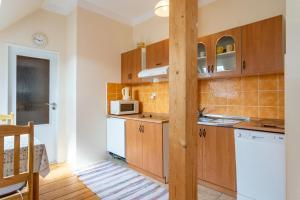 Kuchyň nebo kuchyňský kout v ubytování Vila Josefina Jizerské hory