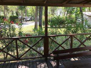 Výhled na bazén z ubytování Campeggio Falconera nebo okolí