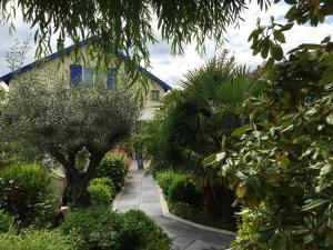 Jardin de l'établissement B&B Casa La Palma