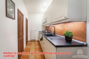 Een keuken of kitchenette bij Perunika Apartment in Prague