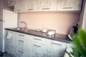 Кухня или мини-кухня в Hostel Barbórka