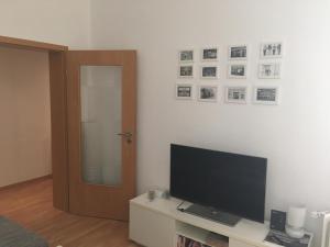 TV a/nebo společenská místnost v ubytování Schönes 2- Zimmer Appartement Hannover/Südstadt, City und Messe nah