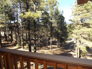 Arizona Mountain Inn & Cabins during the winter