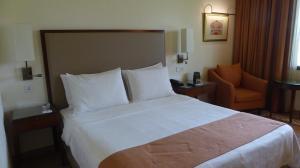 سرير أو أسرّة في غرفة في تريدنت أغرا