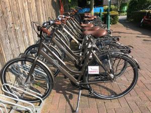 Radfahren an der Unterkunft NordWest-Hotel Amsterdam Superior oder in der Nähe