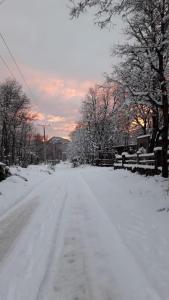 Ecolodge La Posada del Valle during the winter