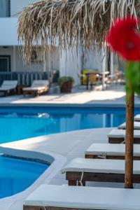 Der Swimmingpool an oder in der Nähe von Sunny Days