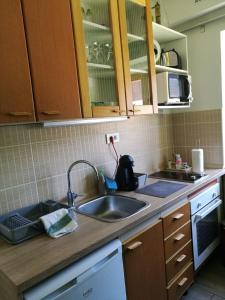 Kuchyň nebo kuchyňský kout v ubytování Apartment Happiness