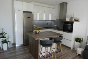 Kuchyň nebo kuchyňský kout v ubytování Apartman Maja