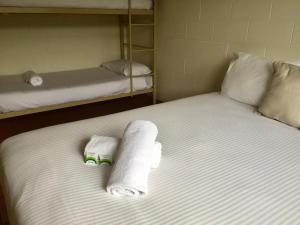 Кровать или кровати в номере Koala Beach Resort Cairns