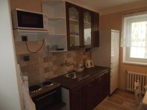 A kitchen or kitchenette at Penzion Monika