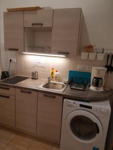 Кухня или мини-кухня в Hostel Opletalova