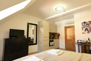 Televízia a/alebo spoločenská miestnosť v ubytovaní Bed&Bike Prachatice