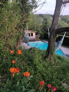 """Piscine de l'établissement Loft """"Home & Pool"""" ou située à proximité"""