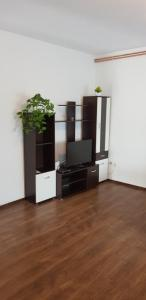 TV a/nebo společenská místnost v ubytování Apartments Joso Hodak