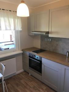 A kitchen or kitchenette at 1-Bedroom apartment in city centre