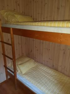 A bunk bed or bunk beds in a room at Cozy Cottage in the Woods, near Dyreparken in Kristiansand, Lake Lolandsvannet