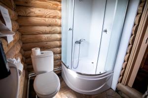 A bathroom at Гостевой дом Elisa Sarkau