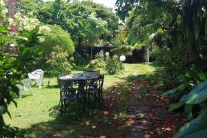 A garden outside Villa Florez