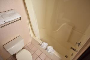 A bathroom at Super 8 by Wyndham Springfield/Battlefield