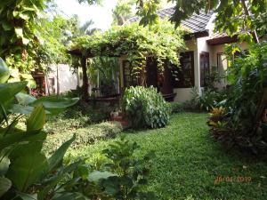 A garden outside Montien House