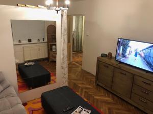 A television and/or entertainment center at ÚTULNÝ BYT MEZI LÁZNĚMI A HORAMI