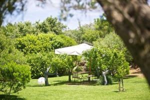 A garden outside Masseria Don Cirillo