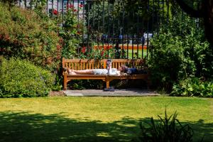 A garden outside Trinity College - Campus Accommodation