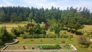 A view of the garden at La Croisée des Fleurs or nearby